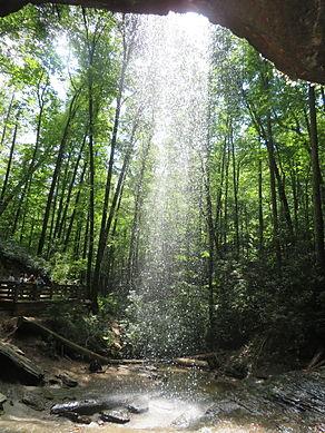 アッシュビル ピスガ国立森林公園 Pisgah Forest